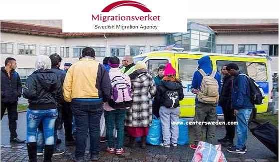 الهجرة السويدية